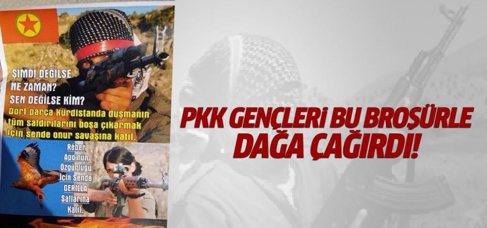 PKK gençleri dağa çağırıyor