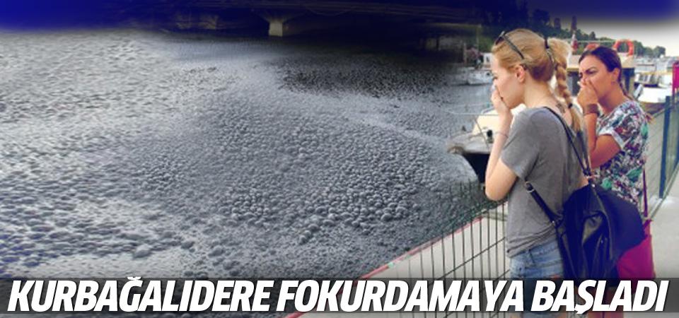Kadıköy'deki Kurbağalıdere pislikten fokurdamaya başladı