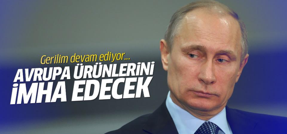 Putin Avrupa ürünlerini imha edecek