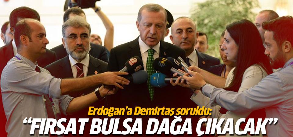 Erdoğan: Demirtaş fırsatını bulsa dağa çıkacak