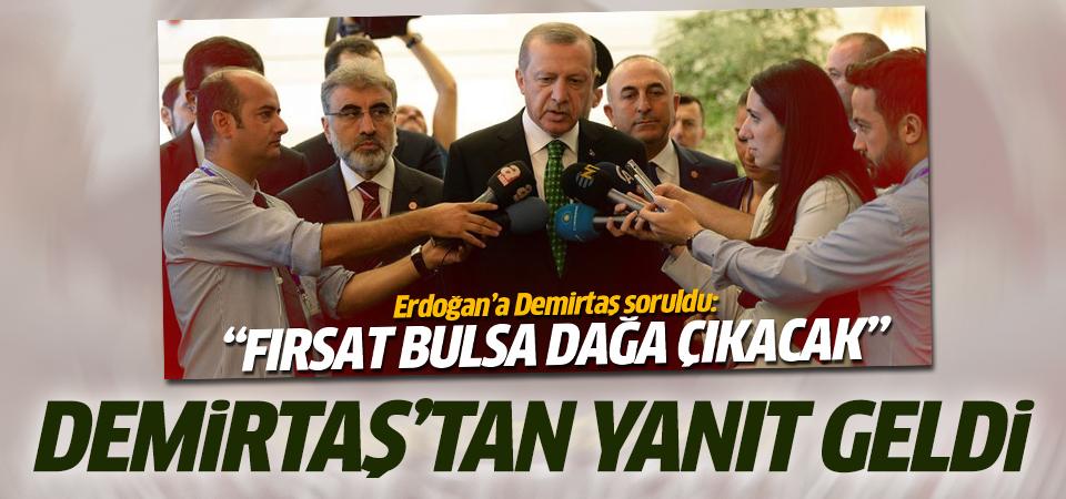 Demirtaş'tan Erdoğan'a cevap