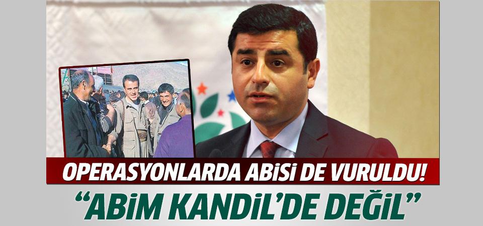 Selahattin Demirtaş: Abim Kandil'de değil