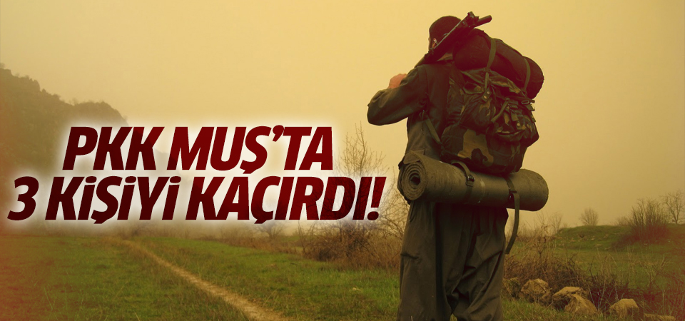 PKK'lılar Muş'ta 3 kişiyi kaçırdı!