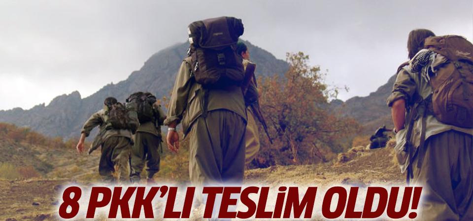 8 PKK'lı teslim oldu!