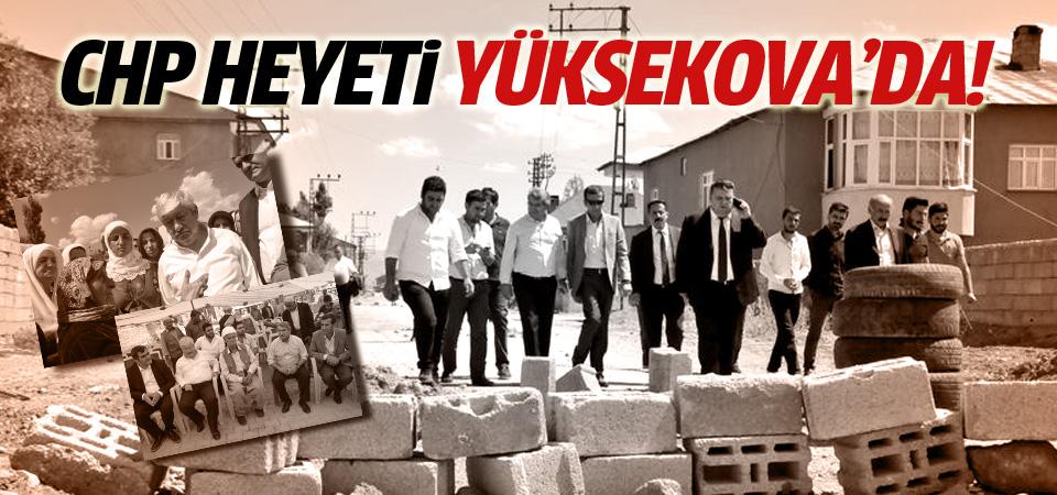 CHP heyeti Yüksekova'ya gitti!