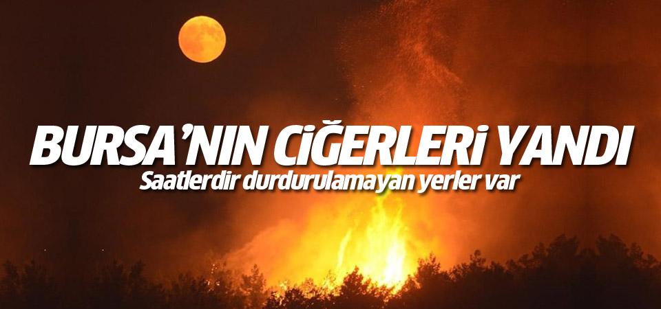 Bursa'nın cigerleri yandı