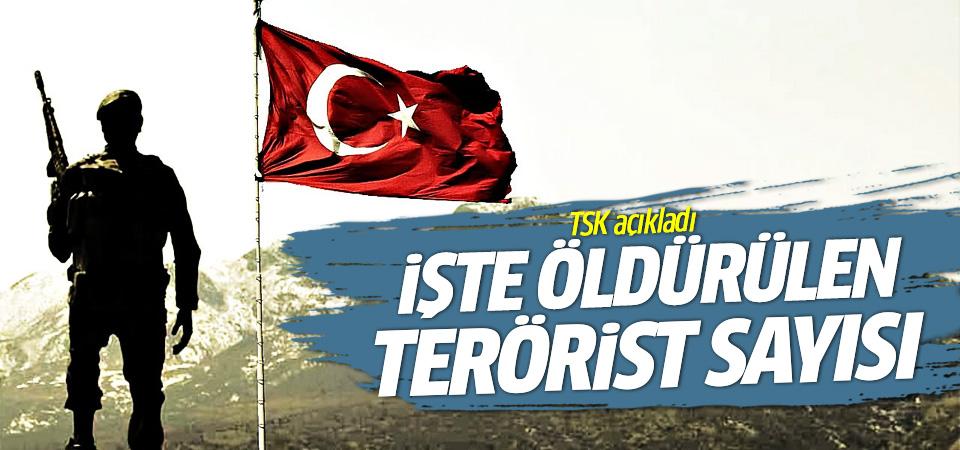 TSK öldürülen terörist sayısını açıkladı