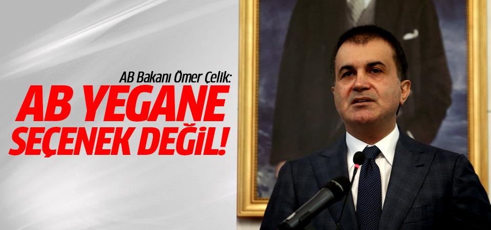 AB Bakanı Ömer Çelik: AB yegane seçenek değildir