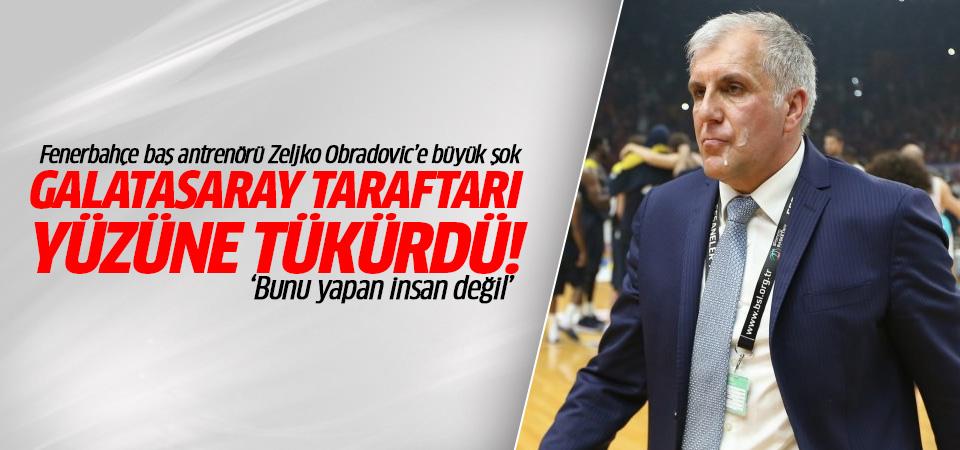 Fenerbahçe baş antrenörü Obradovic'in yüzüne tükürdüler!