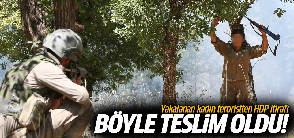 Yakalanan kadın teröristten HDP itirafı