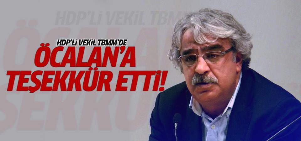 HDP'li vekil Öcalan'a teşekkür etti!