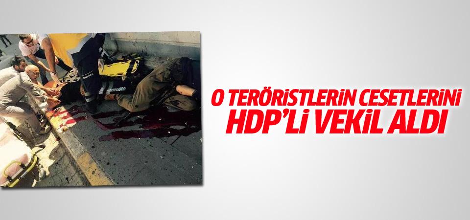 PKK'lıların cesetlerini almaya HDP'li vekil geldi!