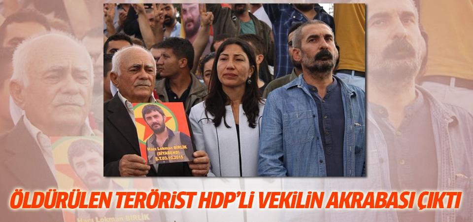 Öldürülen terörist HDP'li vekilin akrabası çıktı