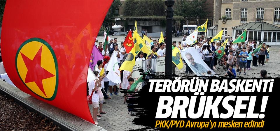 Terörün başkenti Brüksel!