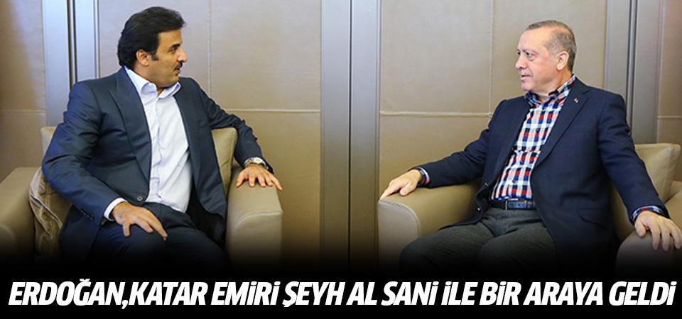 Erdoğan, Katar Emiri Şeyh Al Sani ile bir araya geldi