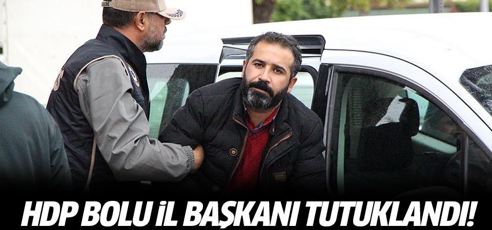 HDP Bolu İl Başkanı tutuklandı