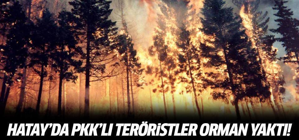 Hatay'da PKK'lı teröristler orman yaktı