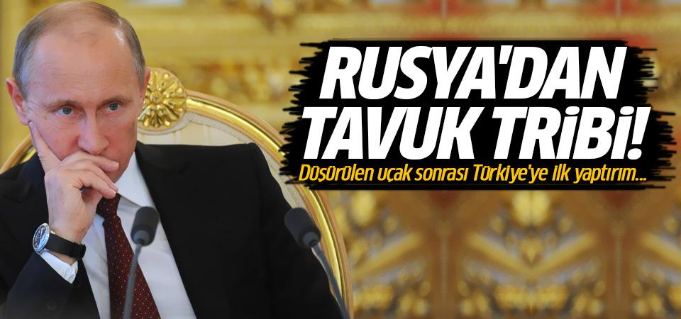 Rusya'dan tavuk tribi!