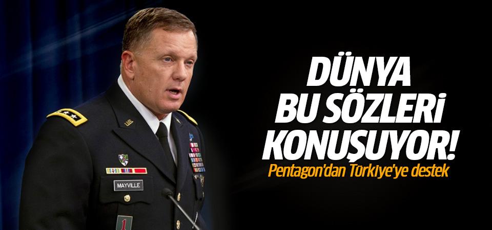 Pentagon'dan Türkiye'ye destek!