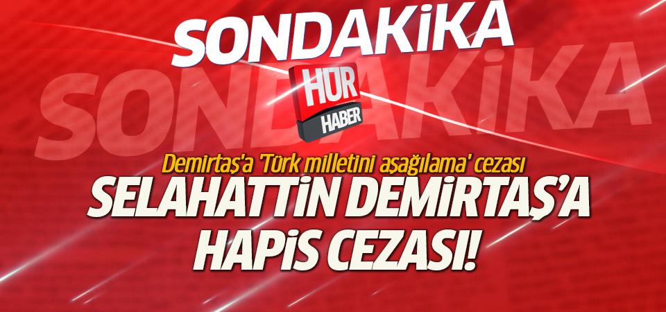 Demirtaş'a hapis cezası!