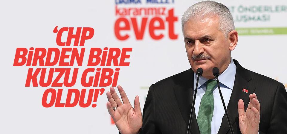 Başbakan Binali Yıldırım: CHP birden bire kuzu gibi oldu