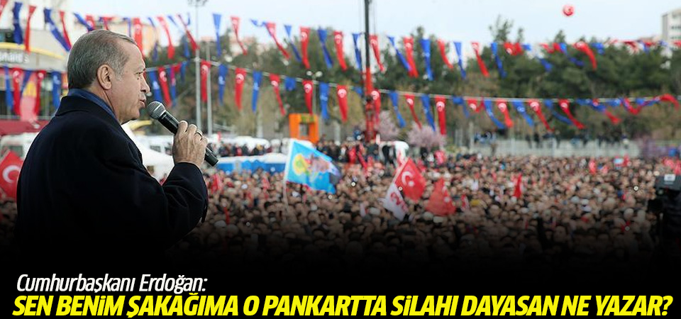 Cumhurbaşkanı Erdoğan: Sen benim şakağıma o pankartta silahı dayasan ne yazar?