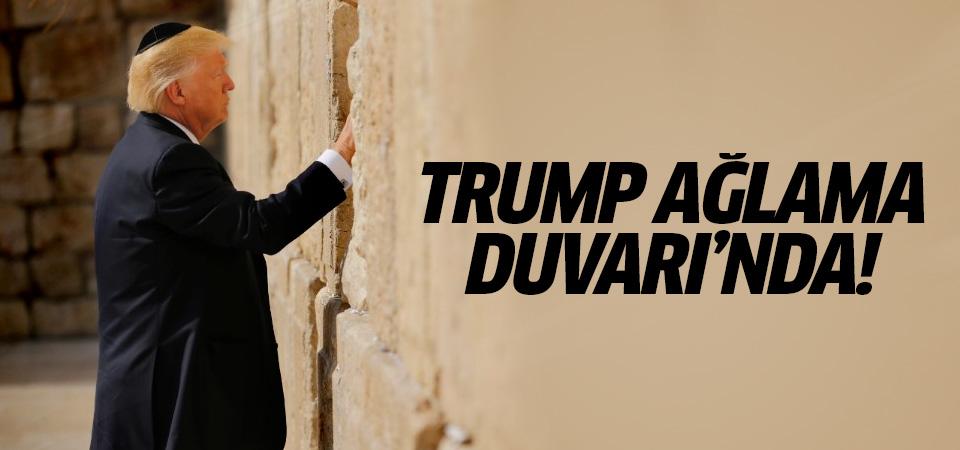 Trump Ağlama Duvarı'nda!