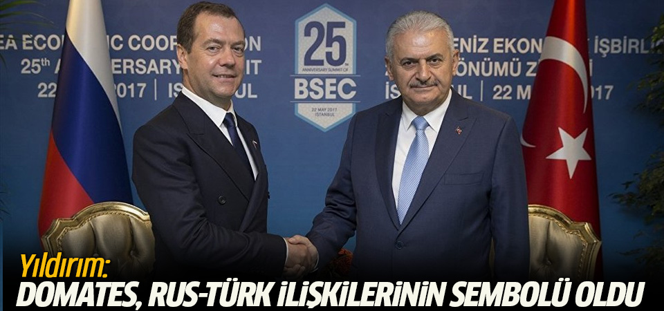 Yıldırım: Domates, Rus-Türk ilişkilerinin sembolü oldu