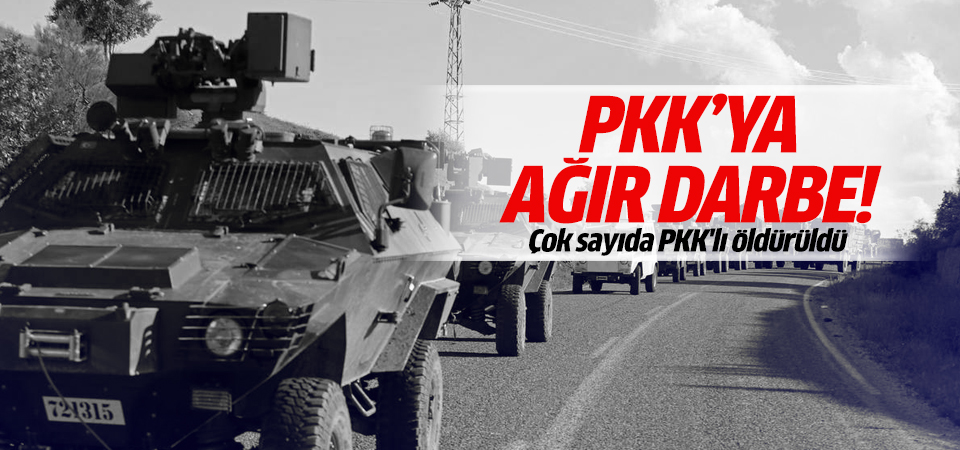 Bakan Soylu duyurdu: PKK'ya ağır darbe!