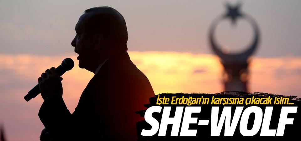 İşte Erdoğan'ın karşısına çıkacak isim! Dişi kurt, She - wolf