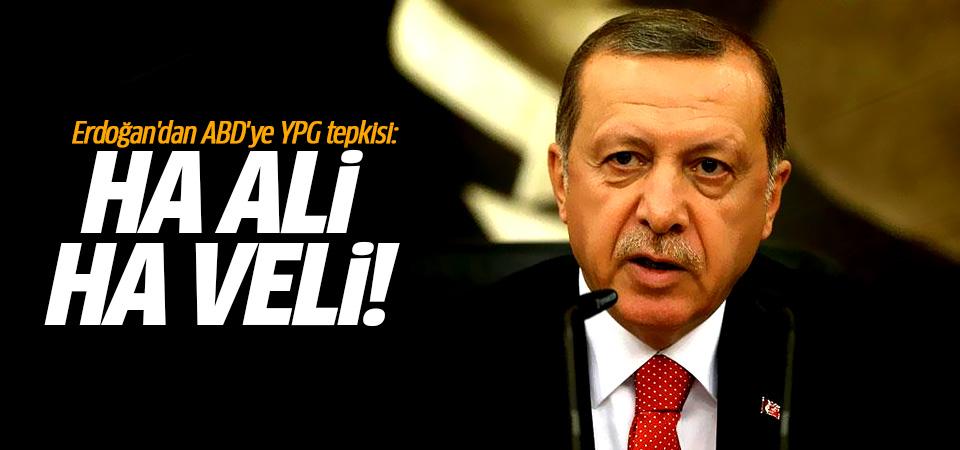 Cumhurbaşkanı Erdoğan'dan ABD'ye YPG tepkisi: Ha Ali ha Veli