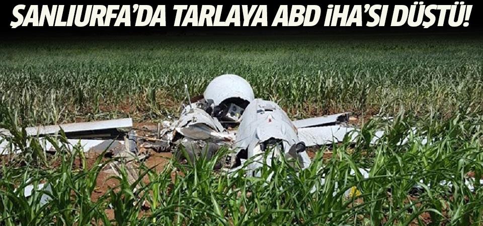 Şanlıurfa'da mısır tarlasına insansız hava aracı düştü