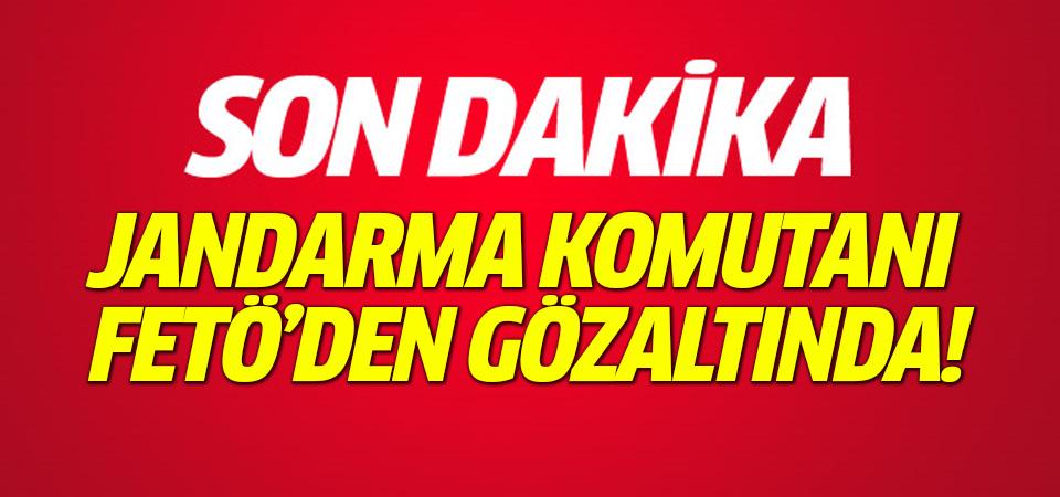 Maçka İlçe Jandarma Komutanı, FETÖ'den gözaltına alındı!