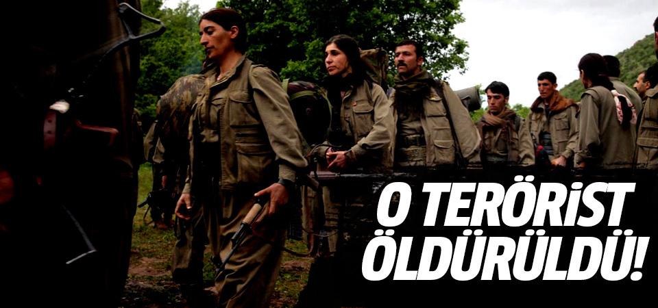 Pilotlarımızın kanı yerde kalmadı! O alçak PKK'lı terörist öldürüldü