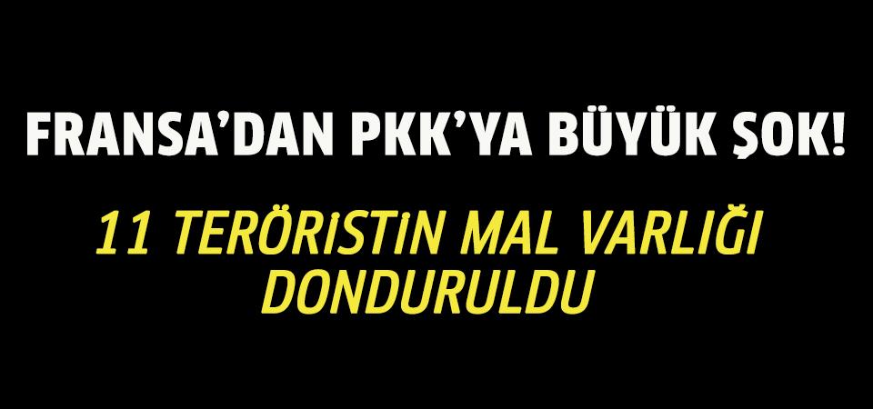Fransa'dan PKK'ya büyük şok