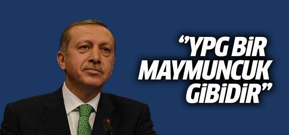 Erdoğan: YPG bir maymuncuk gibidir