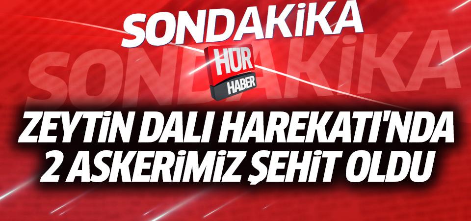 TSK: Zeytin Dalı Harekatı'nda iki asker şehit oldu