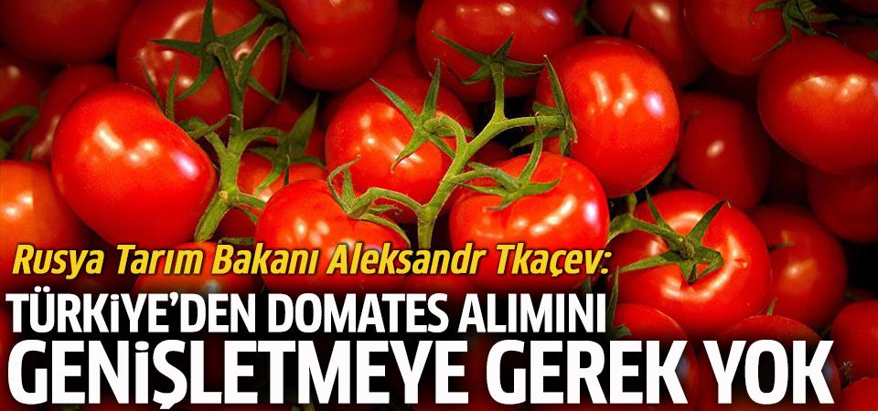 Rusya Tarım Bakanlığı'ndan, Türkiye'de üretilen domatesler hakkında yeni açıklama