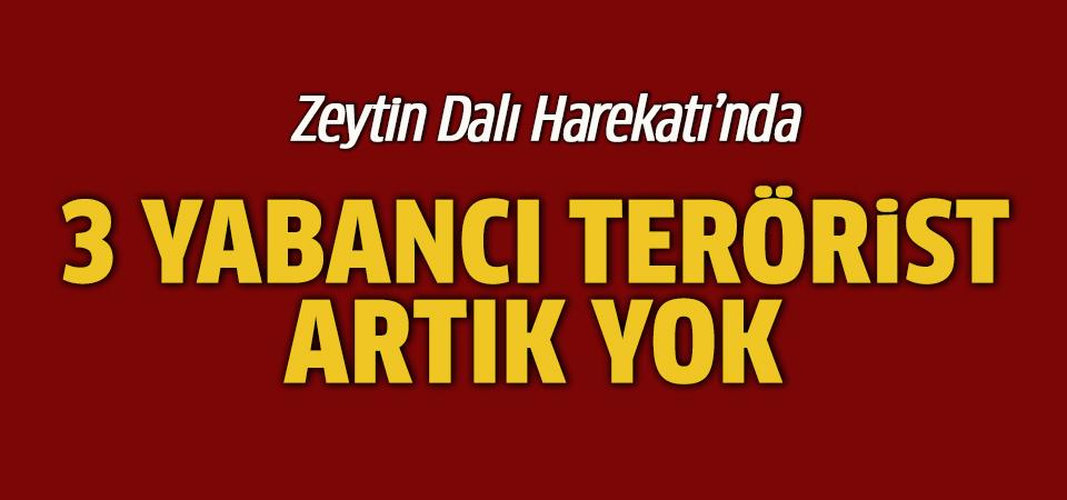 Türkiye'yi tehdit eden yabancı teröristler öldürüldü
