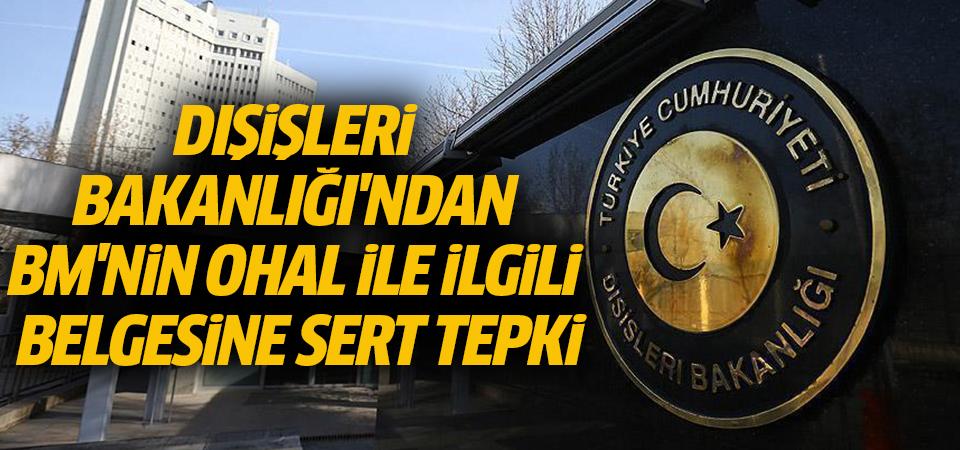 Türkiye'den BM'nin OHAL ile ilgili belgesine sert tepki