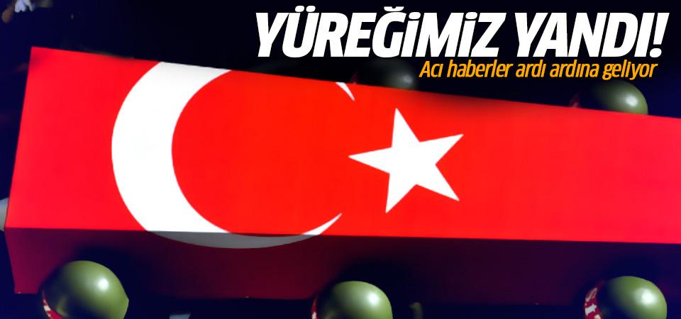 Bir acı haber de Bitlis'ten: Şehit ve yaralı var
