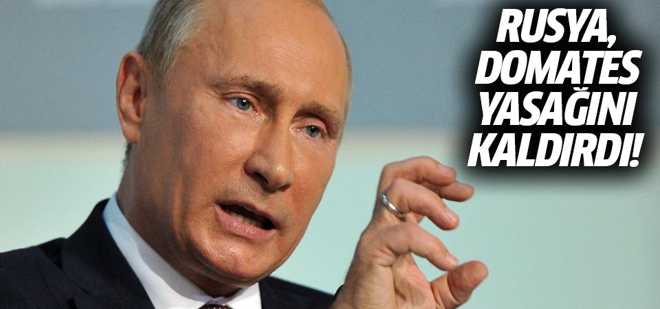 Rusya'dan Türk domatesine sınırsız vize