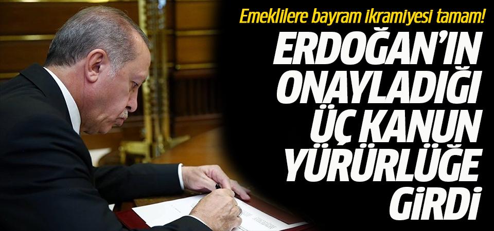 Erdoğan'ın onayladığı üç kanun yürürlüğe girdi