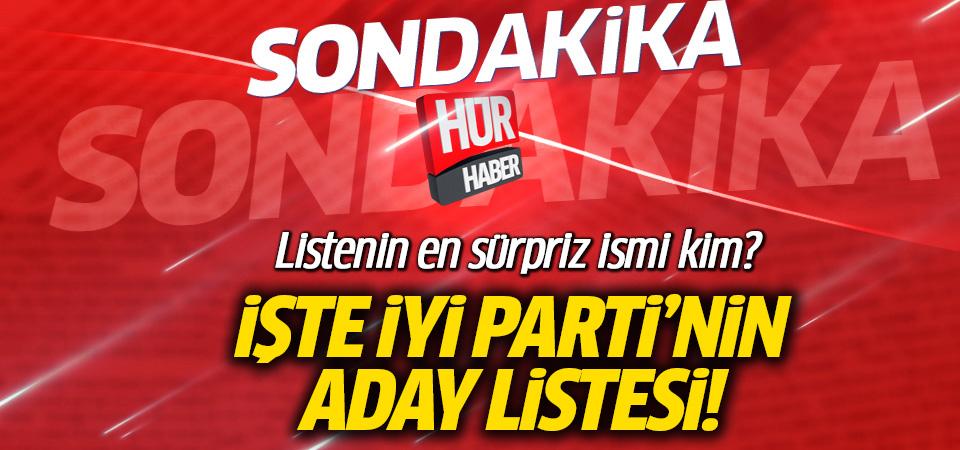 İYİ Parti'nin milletvekili aday listesi İşte 2018 tam liste...