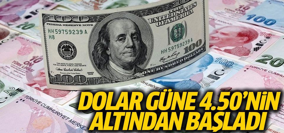 Dolar/TL, güne 4.50'nin altından başladı