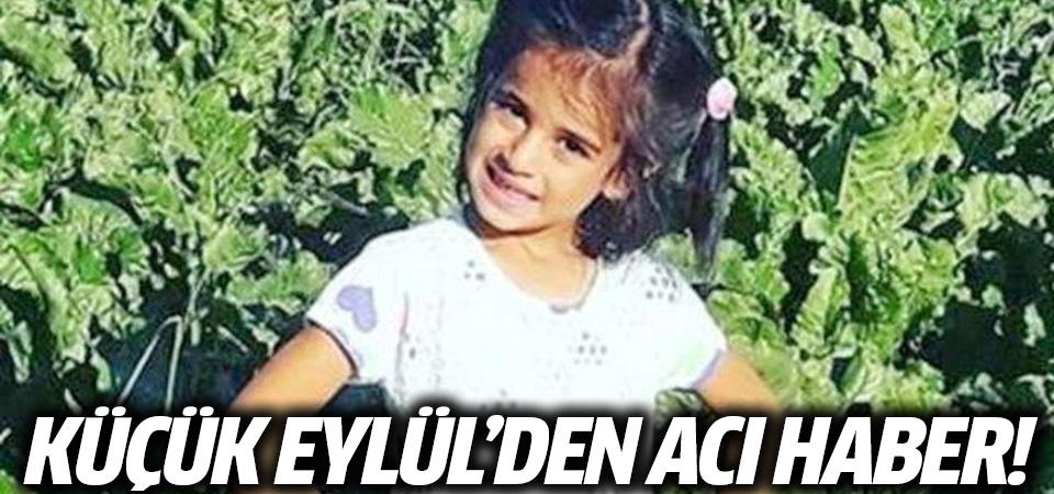 Ankara Polatlı'da, 1 haftadır aranan 8 yaşındaki Eylül'ün cansız bedeni bulundu