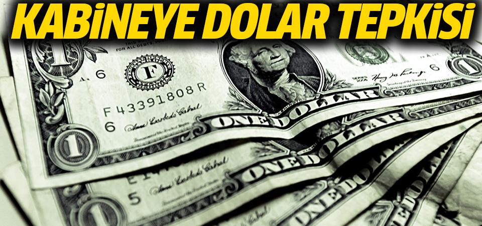 Dolar, yeni kabine sonrası yükselişe geçti