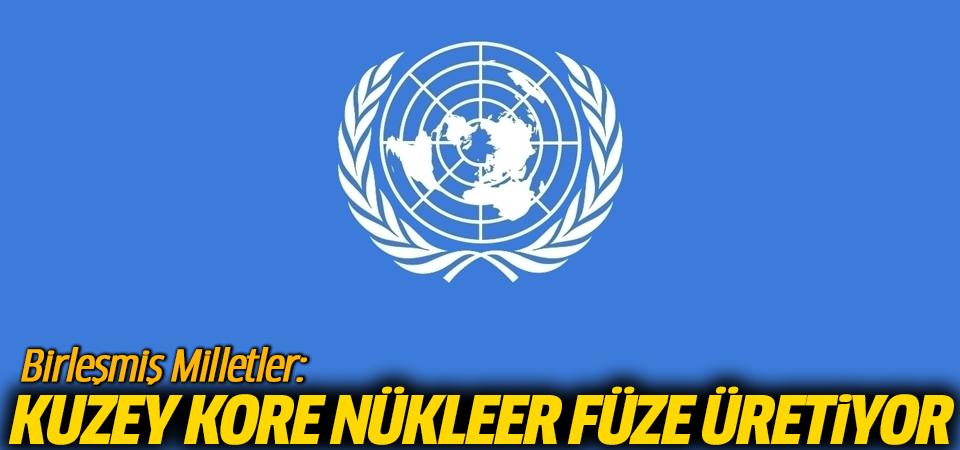 Birleşmiş Milletler: Kuzey Kore nükleer füze üretiyor