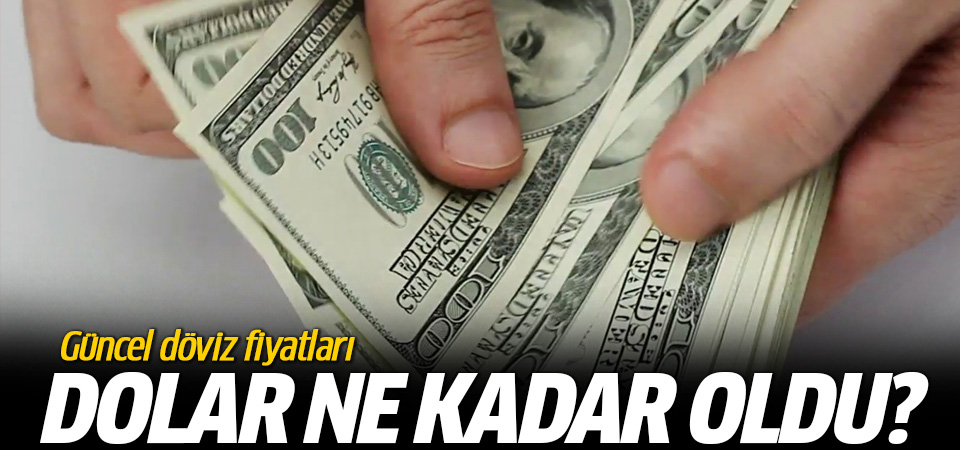 Döviz Dolar kuru kaç TL altın gram ne kadar?
