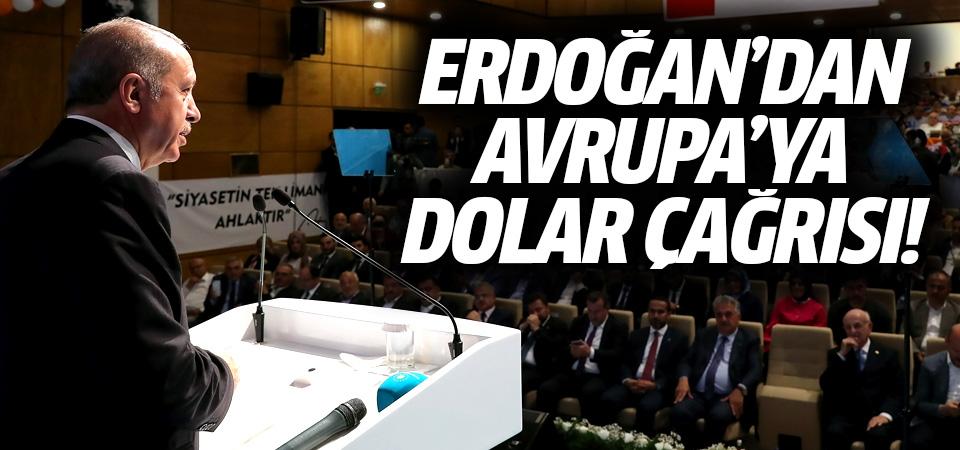 Cumhurbaşkanı Erdoğan'dan Avrupa'ya dolar çağrısı
